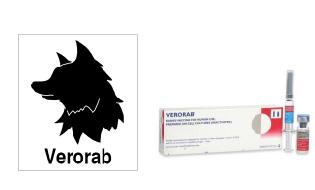 狂犬病ワクチン(Verorab)